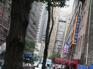 Тёртл Бэй - один из районов Манхэттена