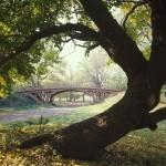 Центральный парк в Нью-Йорке, большое фото