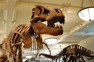 Ящеротазовый динозавр